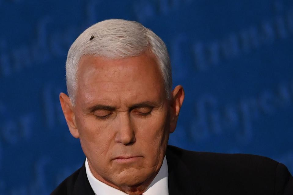 A fly rests on the head of US Vice President Mike Pence as he takes notes during the vice presidential debate (AFP via Getty Images)