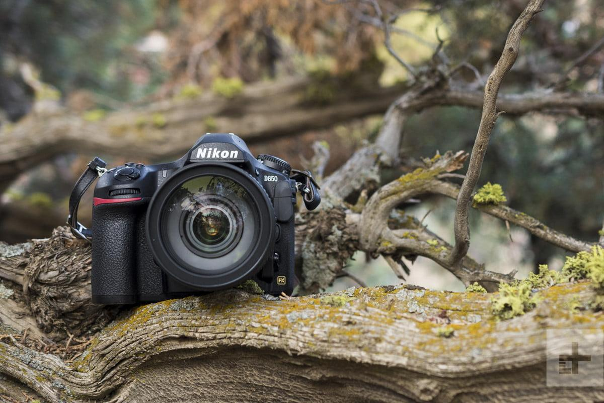 As mirrorless cameras continue to pick up speed -- with thanks mainly to Sony's innovative offerings -- the DSLR is beginning to look like a dinosaur faced with enduring a meteor impact. But can it still be saved?