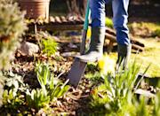 """<p>A previous study conducted by the <a href=""""https://www.housebeautiful.com/uk/garden/plants/a34070218/autumn-gardening/"""" rel=""""nofollow noopener"""" target=""""_blank"""" data-ylk=""""slk:RHS"""" class=""""link rapid-noclick-resp"""">RHS</a> found that autumn is actually the best time to garden. Use this time at home to clean the patio, mow the lawn, clean, paint and repair your fence panels, trim the bushes, tackle the flower beds, and tidy the shed, too. </p>"""
