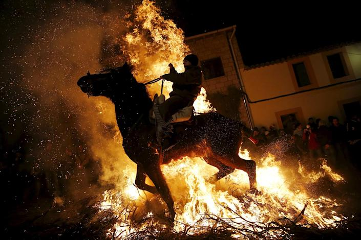 """<p>A man rides a horse through the flames during the """"Luminarias"""" annual religious celebration on the eve of Saint Anthony's day, Spain's patron saint of animals, in the village of San Bartolome de Pinares, northwest of Madrid, Spain, January 16, 2016. (REUTERS/Susana Vera) </p>"""