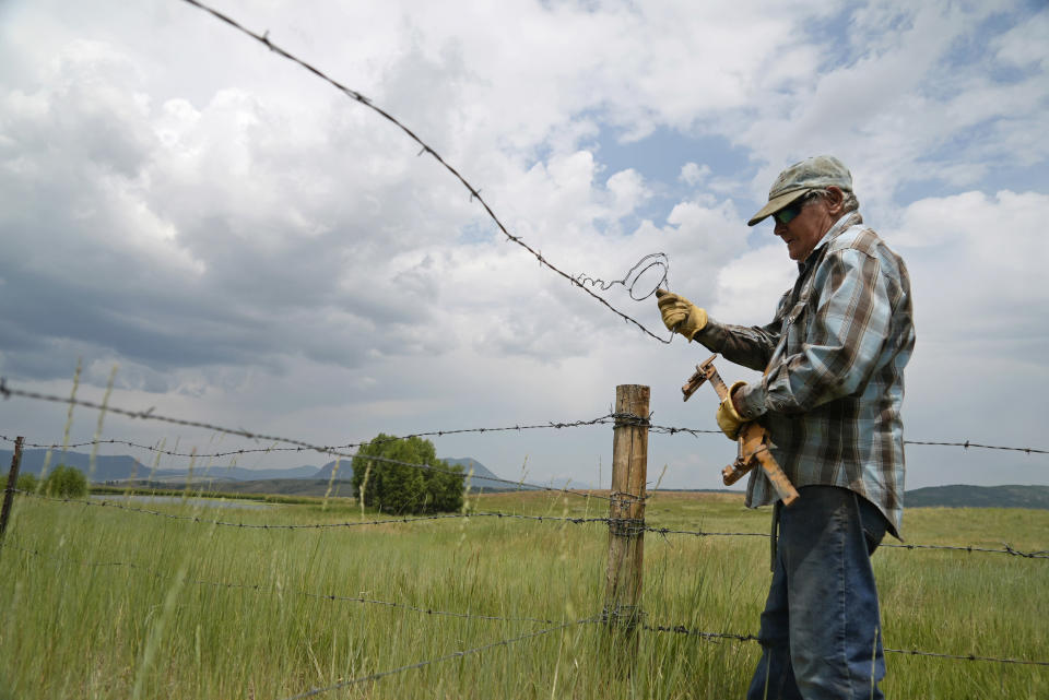 Rancher Jim Stanko removes part of a fence, Wednesday, July 14, 2021, as he works on his ranch near Steamboat Springs, Colo. Stanko says due to drought conditions this year, he may have to sell some of his herd if he can't harvest enough hay to feed them. (AP Photo/Brittany Peterson)