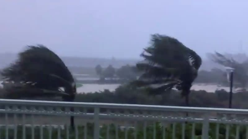 Trees are buffeted by strong winds as Hurricane Isaias hits the Bahamas