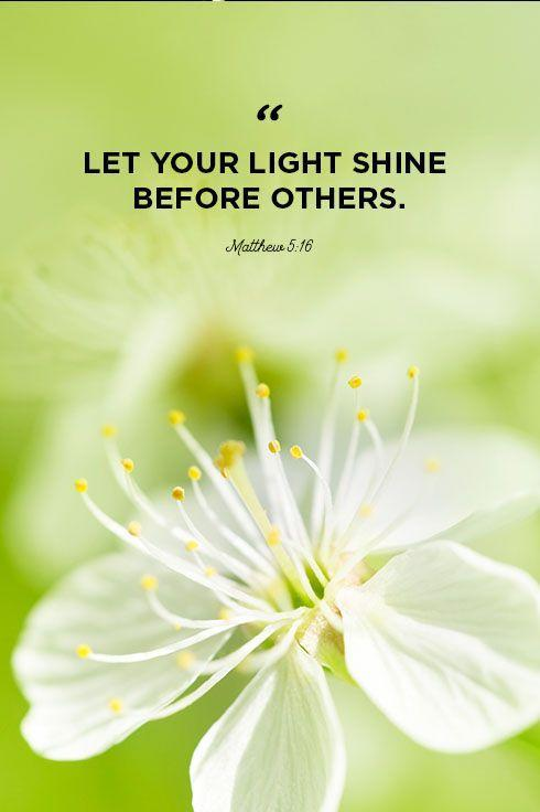 """<p>""""Let your light shine before others.""""</p>"""