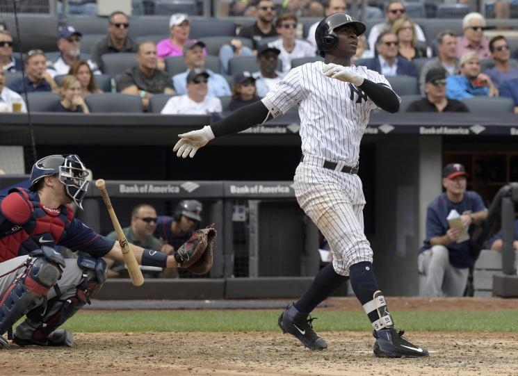 Yankees' shortstop Didi Gregorius is quietly having a brilliant season. (AP)