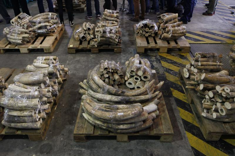 Hong Kong makes $1.4M ivory bust, 3rd since Oct.