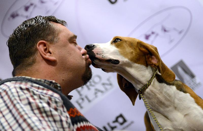 Curt Willis (L) kisses one of his Treeing Walker Coonhounds during a press conference by The Westminster Kennel Club on January 28, 2013 (AFP Photo/Stan Honda)