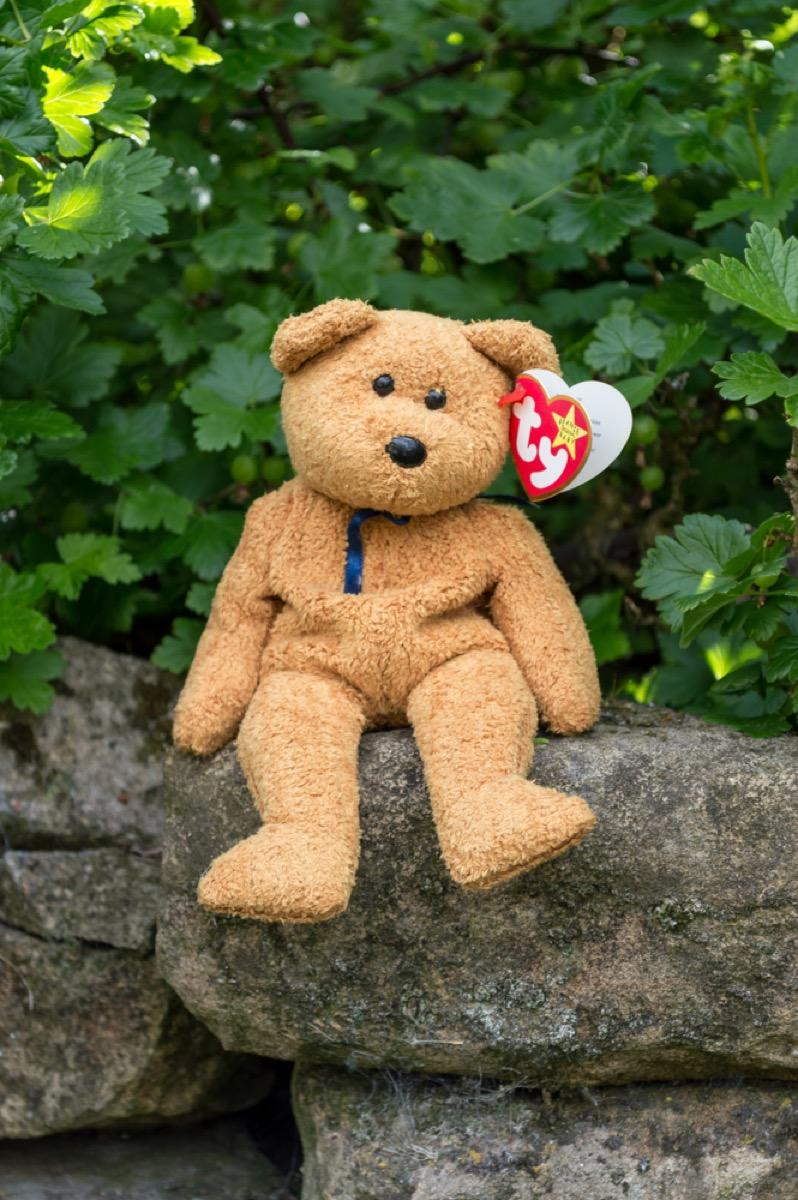beanie baby bear sitting outside in front of a tree