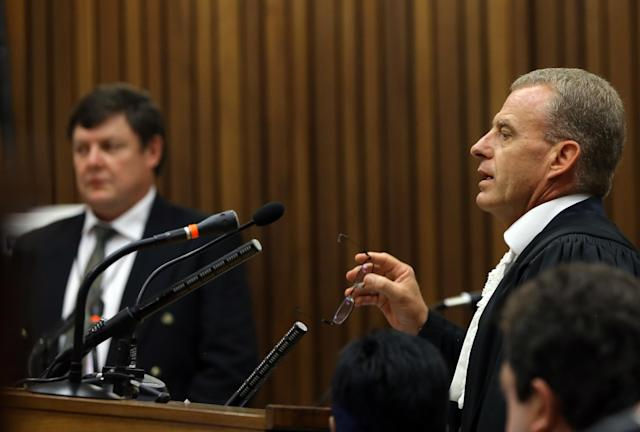 State prosecutor Gerrie Nel, right, speaks as forensic investigator Johannes Vermeulen, left, watches during the Oscar Pistorius trial at the high court in Pretoria, South Africa, Thursday, March 13, 2014. Pistorius is charged with murder for the shooting death of his girlfriend, Reeva Steenkamp, on Valentines Day in 2013. (AP Photo/Themba Hadebe, Pool)