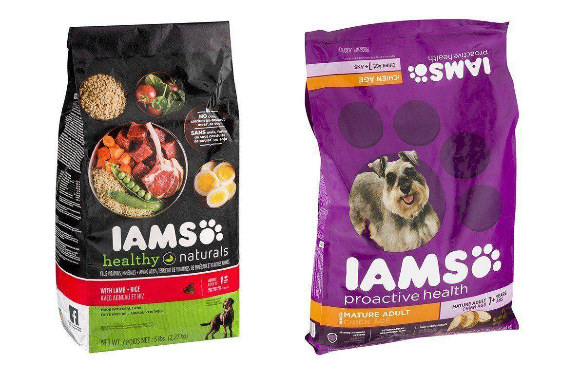 Is Iams A Good Cat Food Brand
