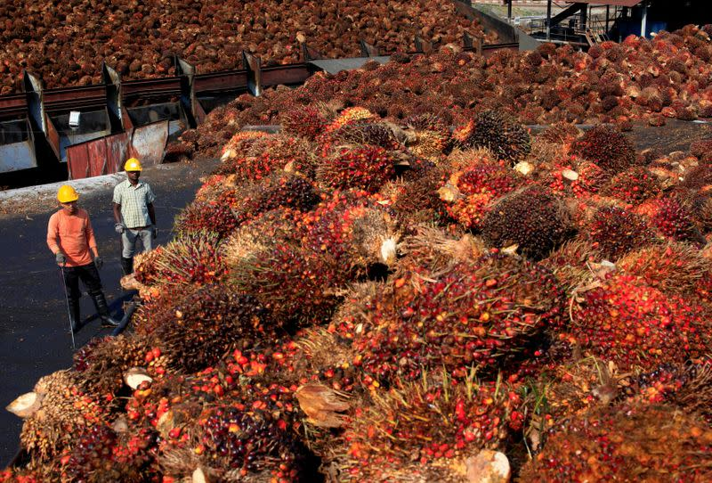 FILE PHOTO: Workers stand near palm oil fruits inside a palm oil factory in Sepang, outside Kuala Lumpur