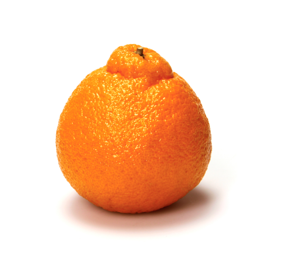 <p>When these babies come into season, run, don't walk, to your local Whole Foods. This citrus fruit has become a customer favorite, so they sell out quickly.</p>