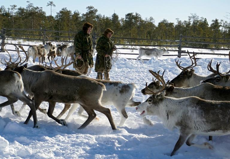 The Sopochin family has seen oil majors gradually encroach on the land in Siberia where they have herded reindeer for generations, but the latest project has made them draw the line