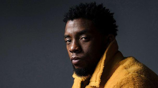 PHOTO: Chadwick Boseman poses for a portrait in New York to promote his film, 'Black Panther,' Feb. 14, 2018. (Victoria Will/Invision/AP, FILE)