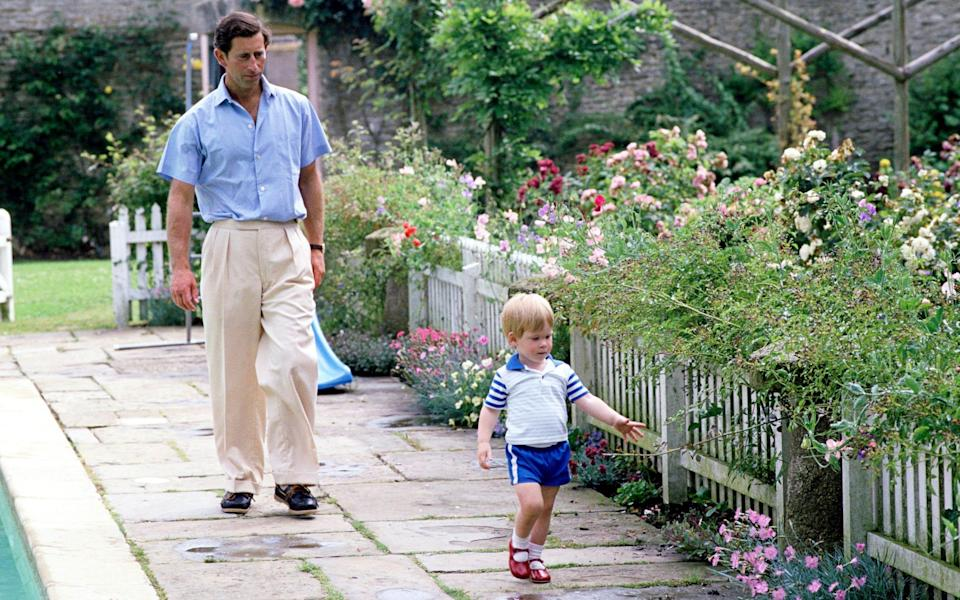 Charles and Harry in the garden at Highgrove - Tim Graham