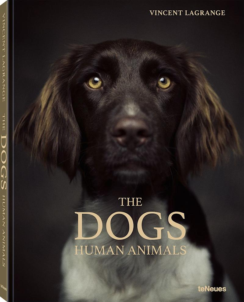 Photo credit: © The Human Animals – DOGS by Vincent Lagrange, to be published by teNeues in November 2020, € 29,90, Chi, Photo © 2020 Vincent Lagrange. All rights reserved.