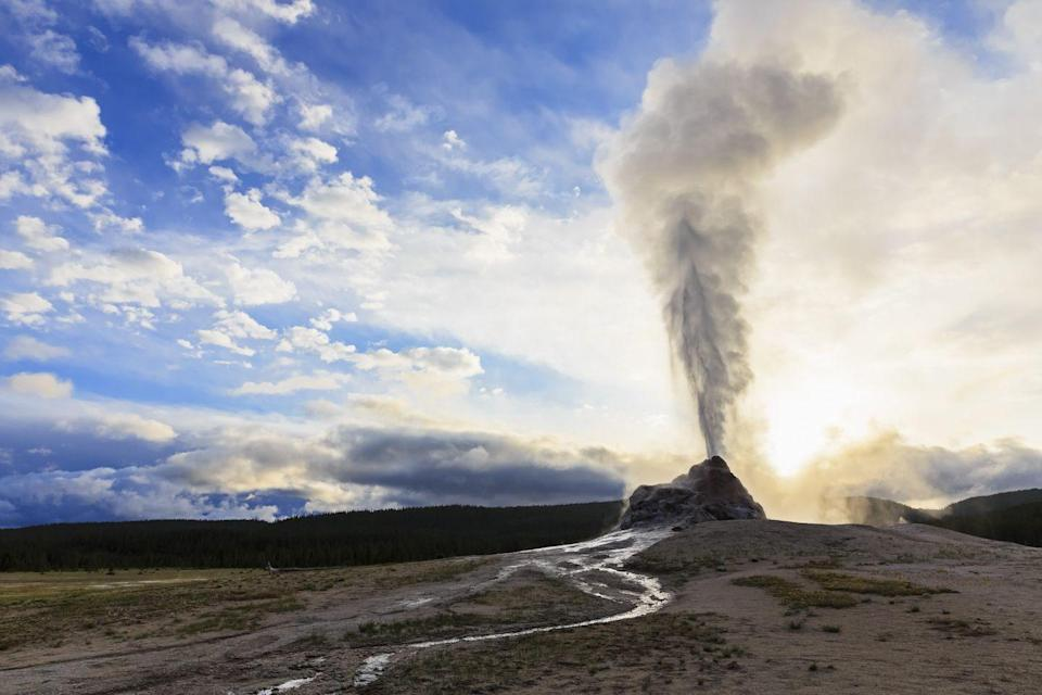 <p>A lot of people can say they've seen Old Faithful, but not as many people can say they have visited Yellowstone's White Dome Geyser erupting at dawn.</p>