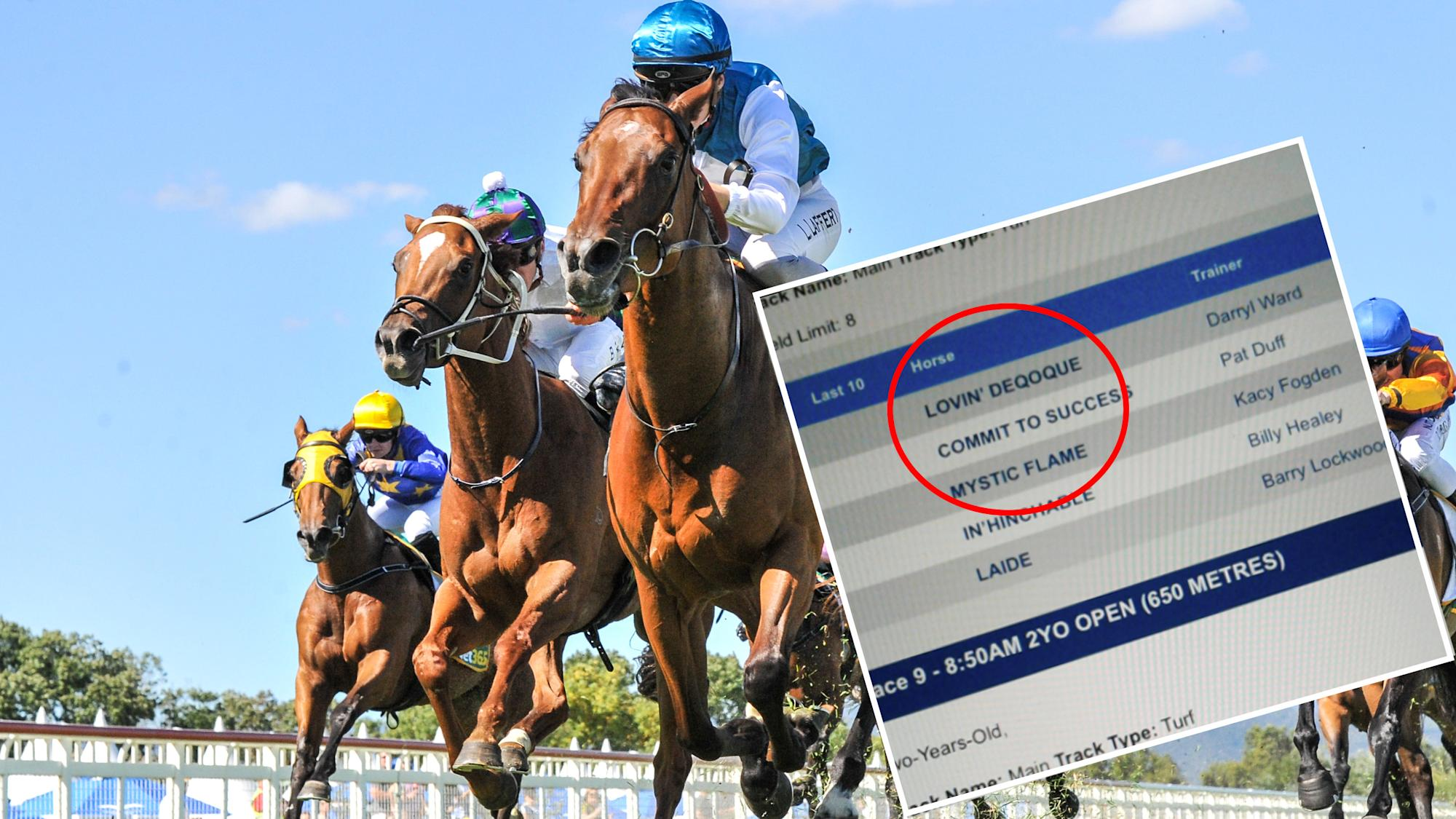 Racing boss' baffling explanation for sexually explicit horse names