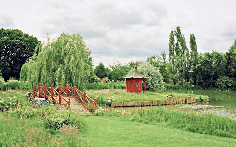 Tranquil: the pond with bridge and pagoda in Prue Leith's garden - Steve Joyce