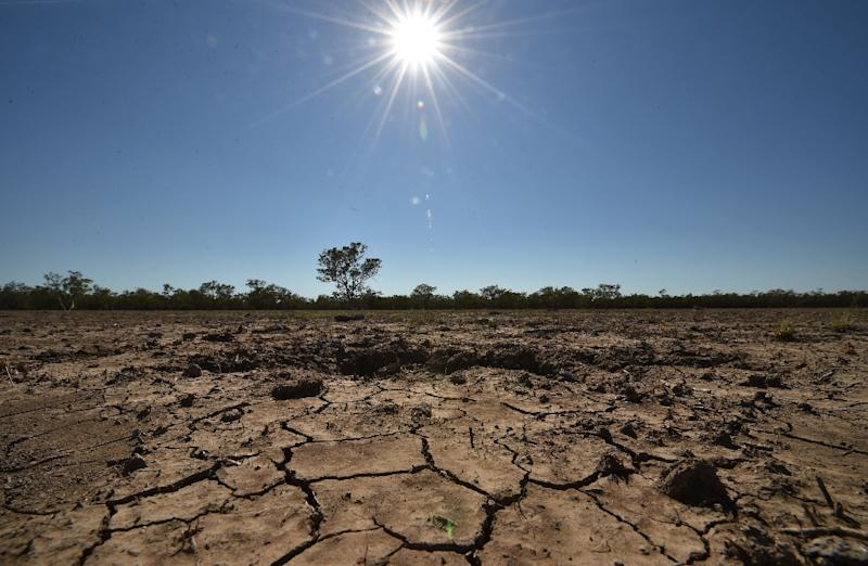 The sun scorches an already cracked earth on a farm in the Australian agricultural town of Walgett, on February 11, 2015, during a drought