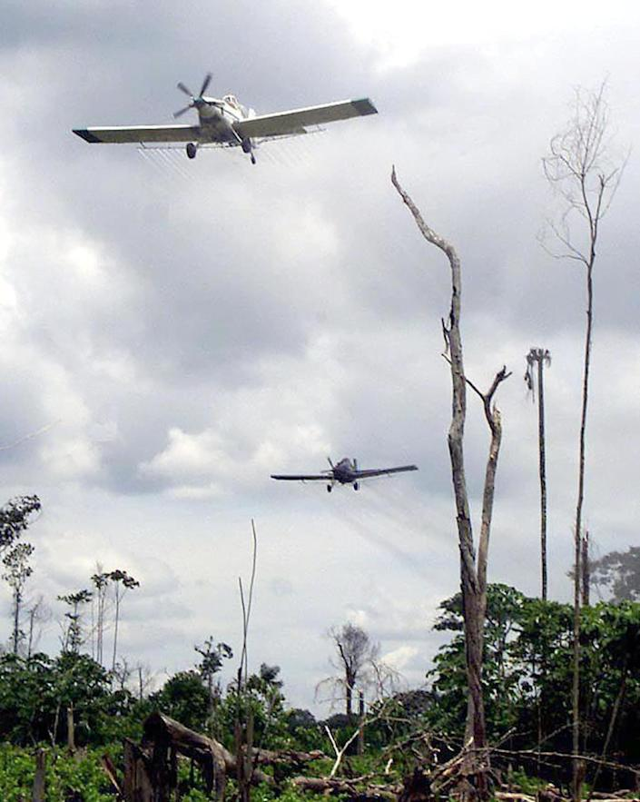 "<div class=""inline-image__caption""> <p>Spraying in May, 2000.</p> </div> <div class=""inline-image__credit""> MARCELO SALINAS/AFP via Getty Images </div>"