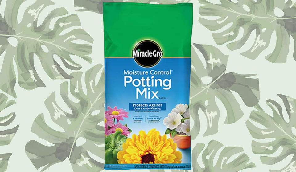 Miracle-Gro Moisture-Control Potting Mix (Photo: Amazon)