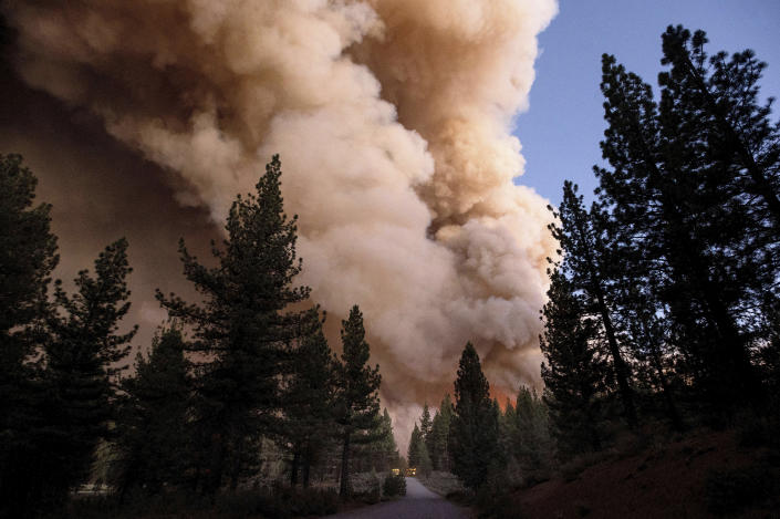 Plumes of smoke and fire rise over a roadway as the Sugar Fire, part of the Beckwourth Complex Fire, burns in Plumas National Forest, Calif., on Thursday, July 8, 2021. (AP Photo/Noah Berger)
