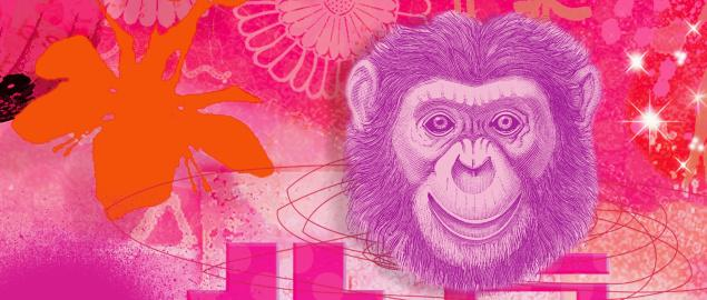Montage of the Chinese year of the Monkey