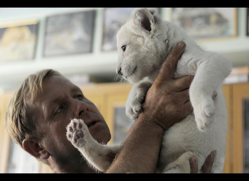 In this photo made Tuesday, July 17, 2012, Yalta Zoo Director Oleg Zubkov holds a white lion cub in Yalta, the Crimean Peninsula, Ukraine. Five white lion cubs were born in the Crimea two weeks ago, three of them in a safari park and two in the Yalta Zoo. They are brought up together at the Yalta Zoo. Cubs have no names but they will be named in a few months when they grow up. (AP Photo/Andrew Lubimov)