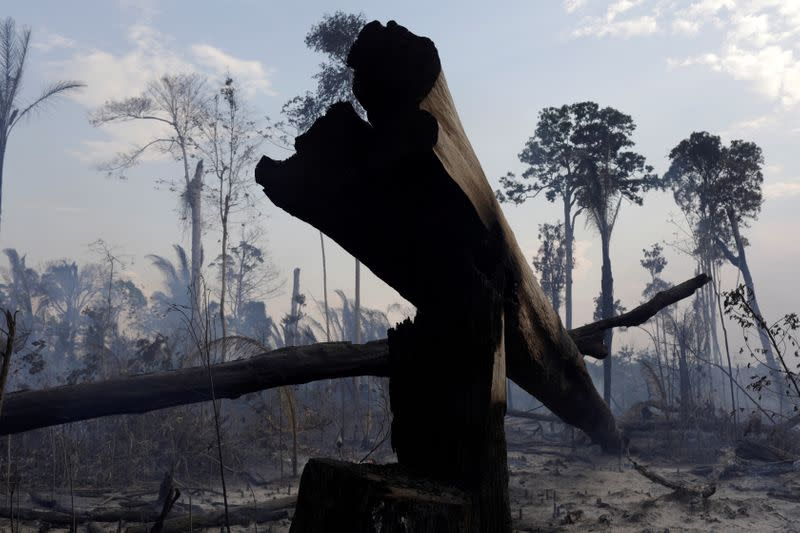 FILE PHOTO: A burning tract of the Amazon forest as it is cleared by farmers, in Rio Pardo