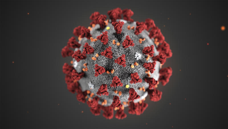 FILE - This illustration provided by the Centers for Disease Control and Prevention (CDC) in January 2020 shows the 2019 Novel Coronavirus (2019-nCoV). Health authorities are preparing for a possible pandemic as they work to contain a respiratory illness in China that's caused by a new virus. Governments are working to contain the virus by limiting travel, isolating sick people and keeping travelers returning from the affected region under quarantine to watch for symptoms. (CDC via AP, File)