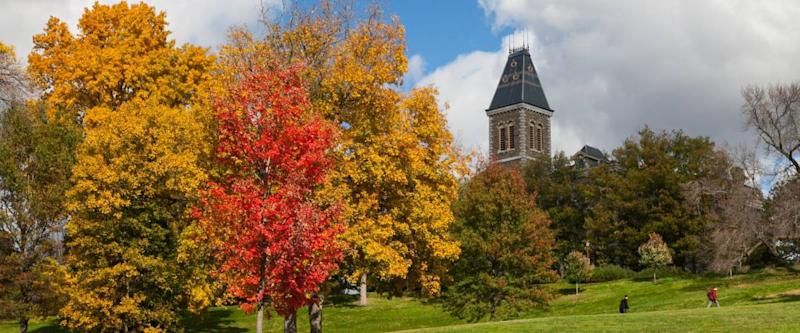 Fall color at Cornell University