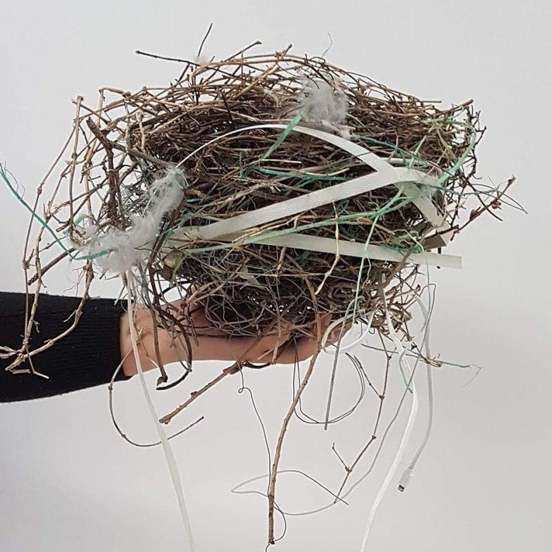 Warriors 4 Wildlife shared photos to Facebook of a birds nest which included rubbish, which could be deadly to the birds. Source: Warriors 4 Wildlife.