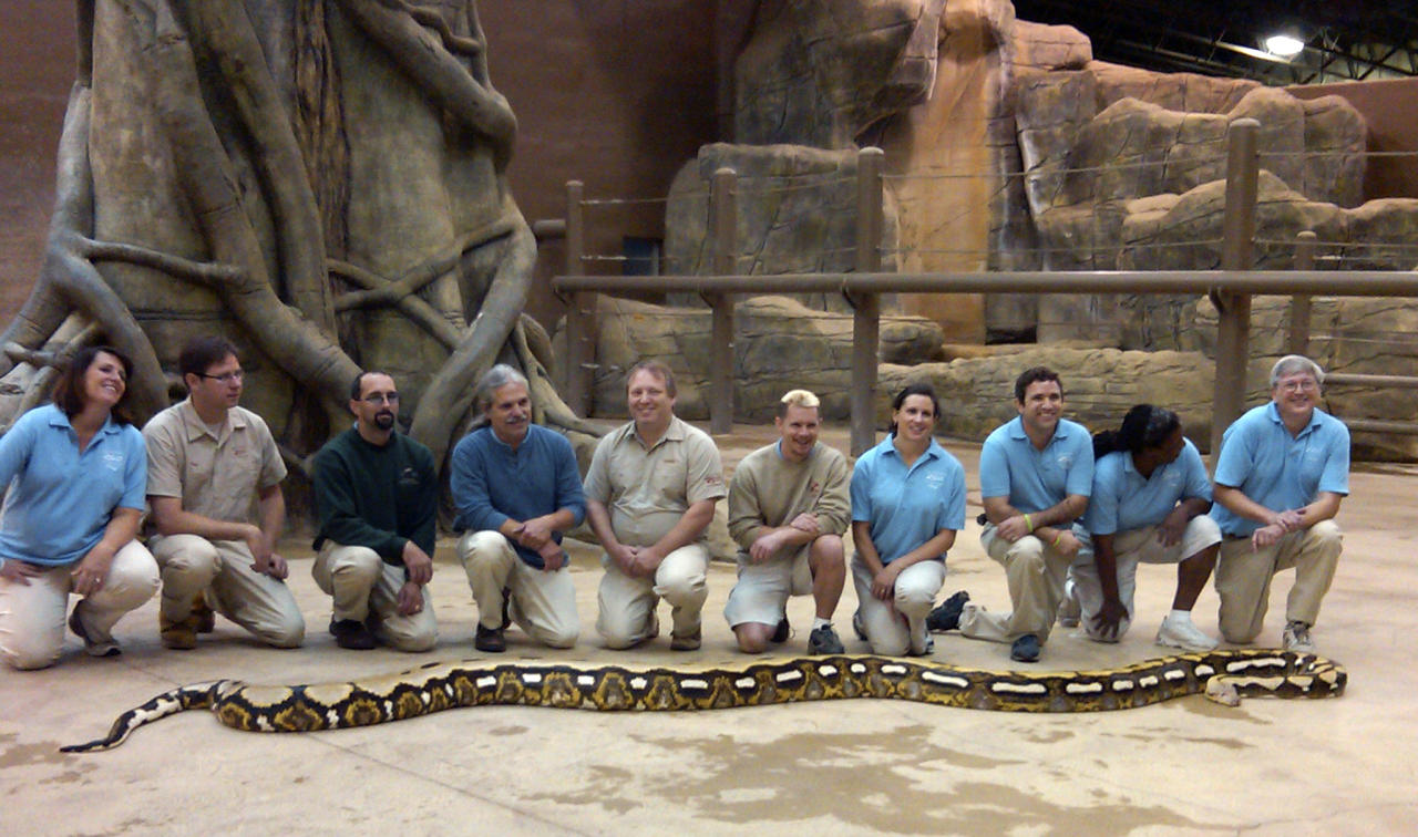 This 2010 photo released by the Columbus Zoo and Aquarium on Wednesday, Oct. 27, 2010, shows Fluffy, a reticulated python at the zoo, posing with zoo staff. The Columbus Zoo and Aquarium says workers found Fluffy dead Wednesday morning from an apparent tumor. The 18-year-old snake was 24-feet-long and 300-pounds and held the title of longest snake living in captivity by Guinness World Records.