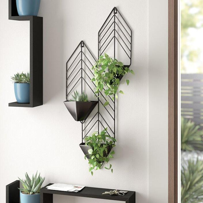 "This trio of geometric planters is a design element all its own. Double up and create an even bigger piece of living wall art. $62, AllModern. <a href=""https://www.allmodern.com/--Regnier-Iron-Wall-Planter-X113399446-L349-K~A001081209.html"" rel=""nofollow noopener"" target=""_blank"" data-ylk=""slk:Get it now!"" class=""link rapid-noclick-resp"">Get it now!</a>"