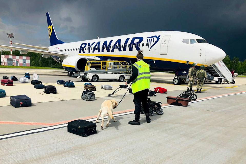 <p>A Belarusian dog handler checks luggages off a Ryanair Boeing 737-8AS in Minsk</p> (ONLINER.BY/AFP via Getty Images)