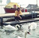 <p>Barry Gibb feeds swans on a boat dock in Great Britain in 1970.</p>