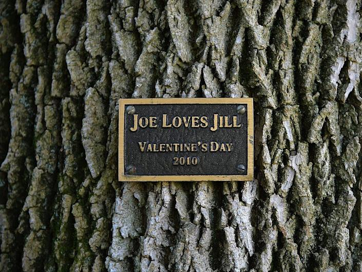 Joe and Jill Biden plaque, VP residence