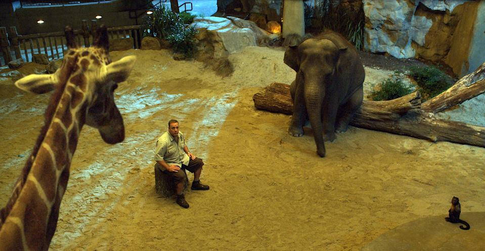 ZOOKEEPER, Kevin James, 2011 (center). ©Sony Pictures/courtesy Everett Collection