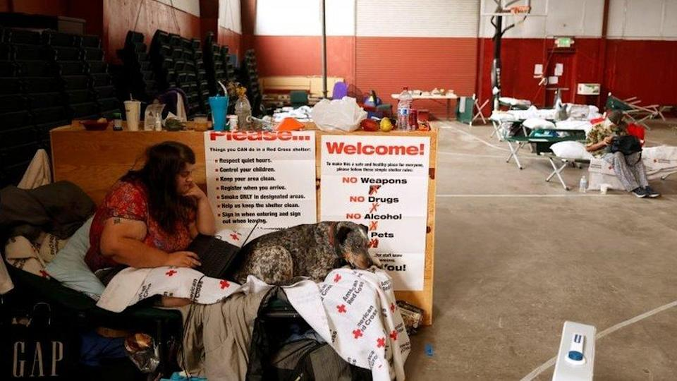 Jack Romero uses her laptop while sitting with her dog Rascal at an evacuation centre