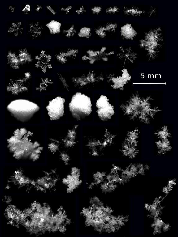 Super Cool: 3D Photographs of Snowflakes