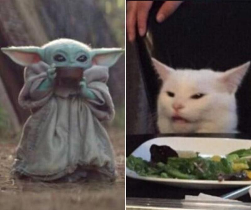 We can't all be Baby Yoda or Smudge the Cat. (Photo: Composite)