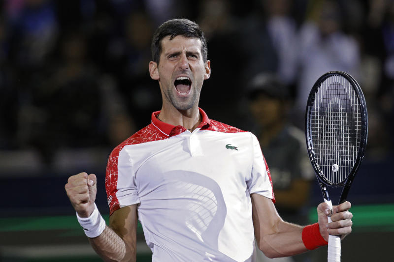 Novak Djokovic celebrates elevation to world number one