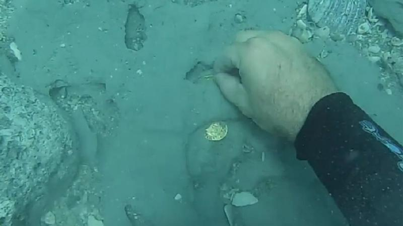 Florida Sunken Treasure Discovery From 1715 Shipwreck Valued at Over $1 Million