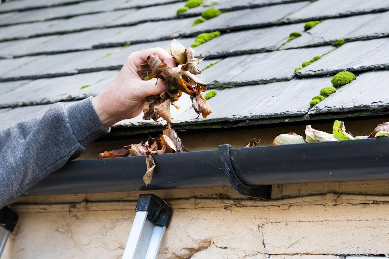 clearing blocked gutter of autumn leaves