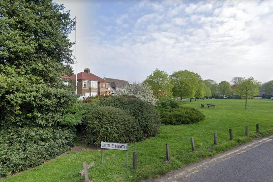 <p>Woman's body 'discovered in bush' on village green in Chadwell Heath</p> (Google Maps)