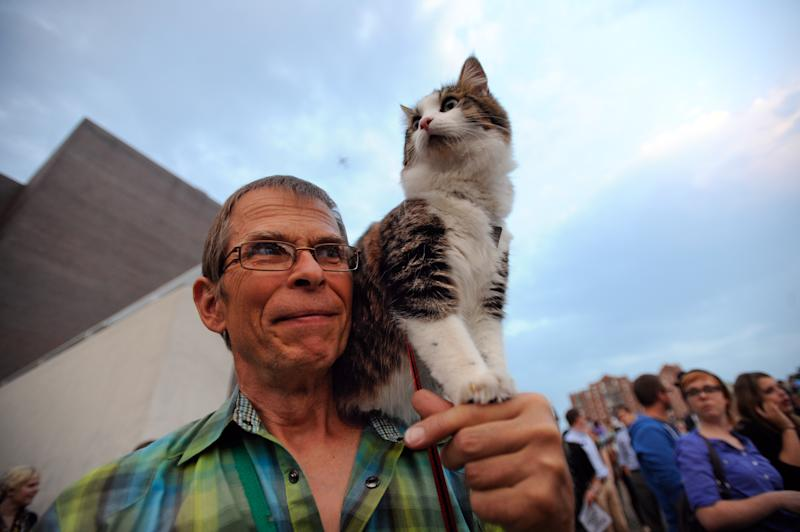 """Leroy Bergstrom of Maple Plain, Minn. arrives with his cat Maestro before the Walker Art Center's first """"Internet Cat Video Film Festival,"""" showcasing the best of cat films on the Internet in Minneapolis Thursday Aug. 30, 2012. The Walker Art Center in Minneapolis held its first-ever online cat video festival, a compilation of silly cat clips that have become an Internet phenomenon, attracting millions of viewers for some of the videos. (AP Photo/Craig Lassig)"""