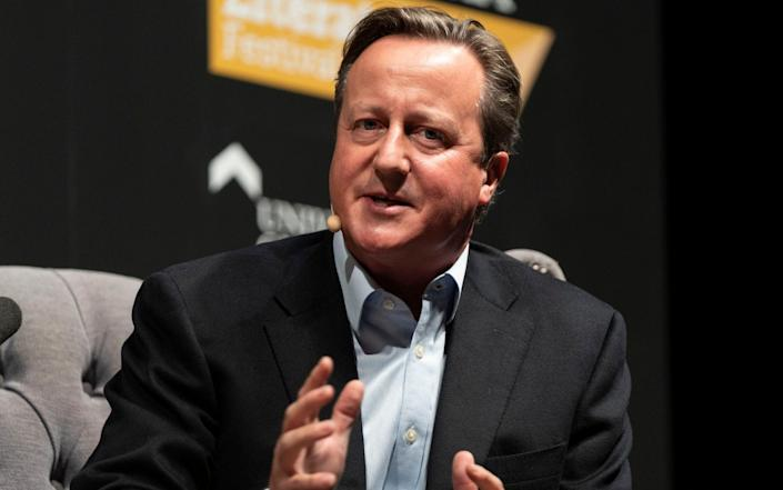 David Cameron joined the finance firm Greensill after leaving office - David Levenson/Getty Images Europe