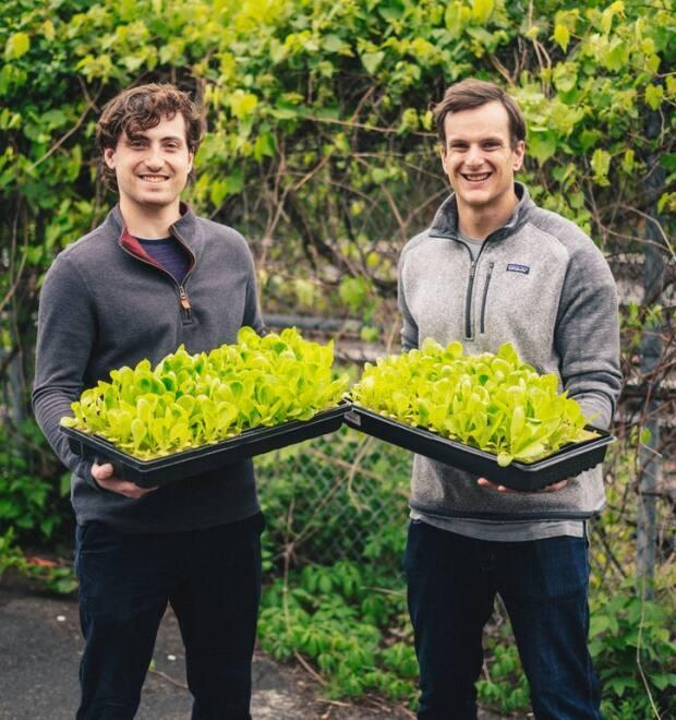 Tristan Zeman, left, and co-founder Jonnie Lawson are the duo behind vertical farming business Interius.