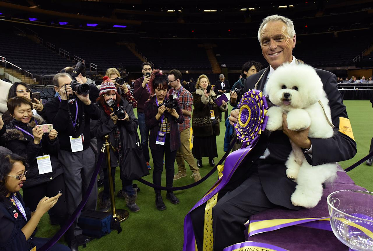 <p>Flynn, a bichon frise, with handler Bill McFadden, poses after winning Best in Show at the Westminster Kennel Club 142nd Annual Dog Show in Madison Square Garden in New York, Feb. 13, 2018. (Photo: Timothy A. Clary/AFP/Getty Images) </p>