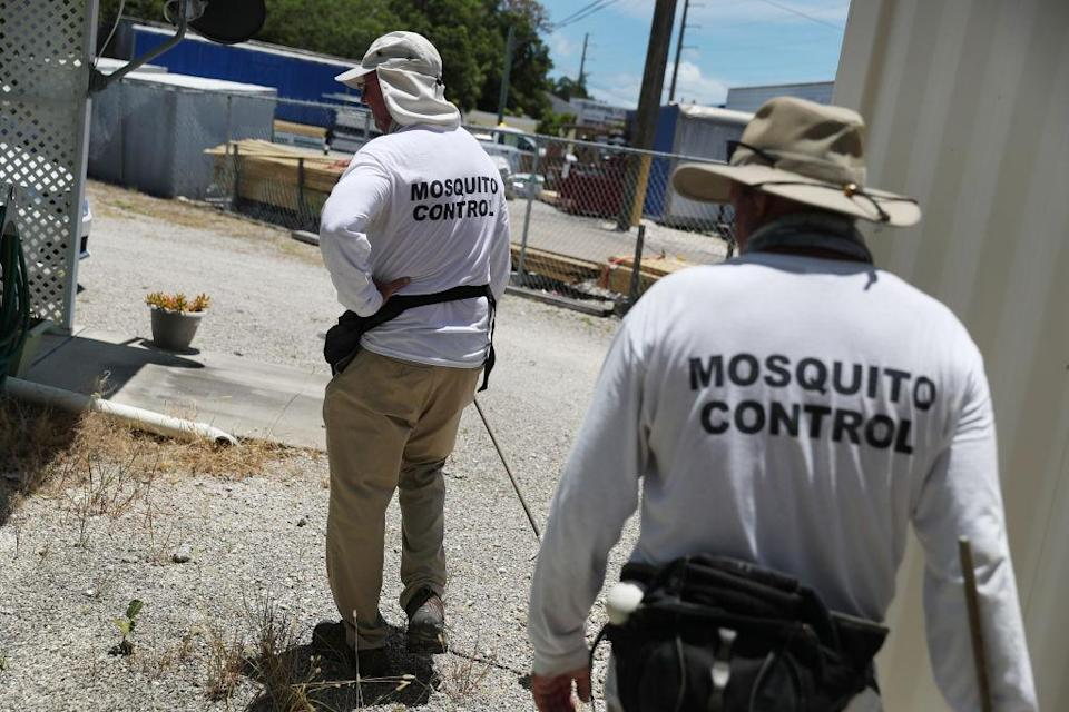 """Billy Ryan and Meredith Kruse (L-R) with the Florida Keys mosquito control department inspect a neighborhood for any mosquitos or areas where they can breed as the county works to eradicate mosquitos carrying dengue fever on July 8, 2020 in Key Largo, Florida.<span class=""""copyright"""">Joe Raedle—Getty Images</span>"""